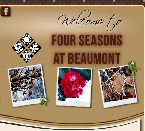 Four Seasons at Beaumont